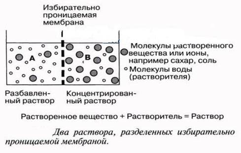 Описание: C:\Documents and Settings\Admin\Рабочий стол\МЕДФАК\химия\177.jpg