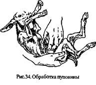 Описание: http://www.agrogalaxy.ru/content/sprav/goats/image034.jpg
