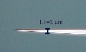 Описание: C:\documents\практика\контелливер\сники обьектов под микроскопом\t_05_obr4_2 копия.jpg