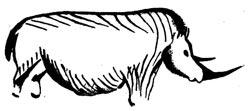 Носорог. Пещера фон де Гом