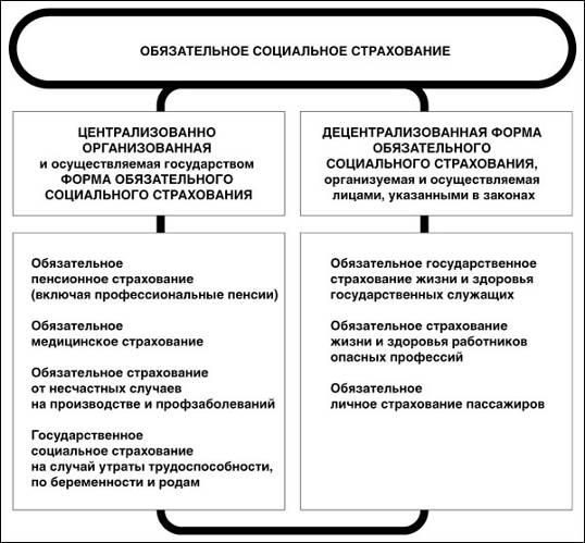 http://biota.ru/files/images/magazines/Yashin1_4za07.jpg