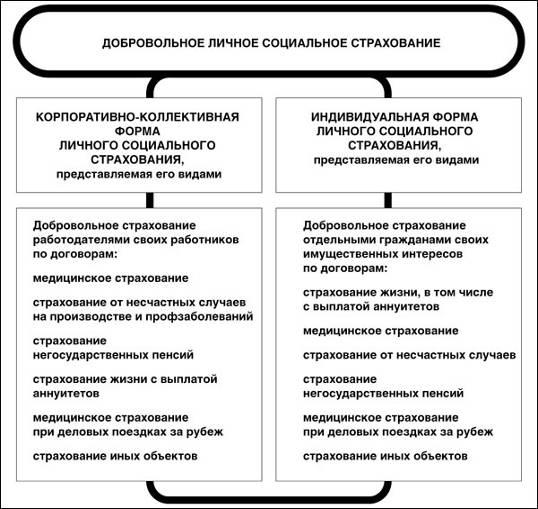 http://biota.ru/files/images/magazines/Yashin2_4za07.jpg