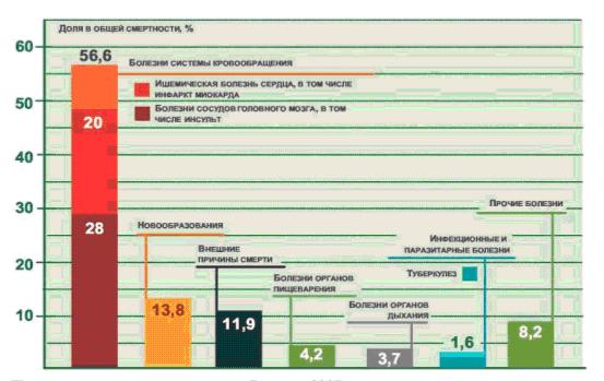 Рис.2 Причины смертности в России, 2007г.