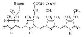 Хромофор фитохрома