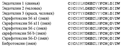 Рис. 14. Первичные структуры структурно-гомологичного семейства эндотелинов / токсинов