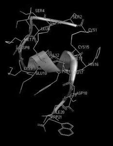 Рис. 15. Пространственная структура сосудосокращающего пептида эндотелина-1 человека